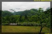 棲蘭國家森林遊樂區:IMG_07.jpg