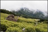 合歡山東峰步道:IMG_17.jpg