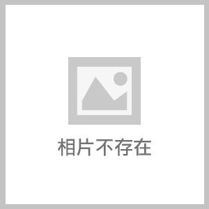 IMG_08.jpg - 大安森林公園‧鳳頭蒼鷹百態圖