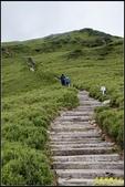 合歡山東峰步道:IMG_18.jpg