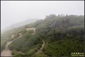 合歡山東峰步道:IMG_21.jpg