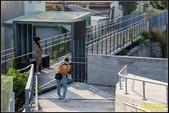 北港天空之橋、女兒橋:IMG_10.jpg
