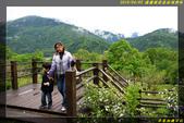 棲蘭國家森林遊樂區:IMG_08.jpg