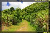 金瓜石地質公園:IMG_03.jpg