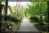 棲蘭國家森林遊樂區:IMG_09.jpg