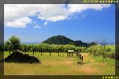 金瓜石地質公園:IMG_04.jpg