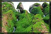 老梅石槽:IMG_18.jpg