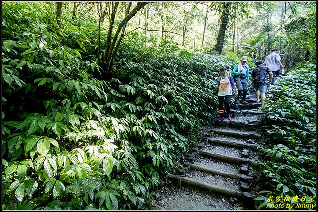 IMG_31.jpg - 聖母登山步道
