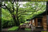 棲蘭國家森林遊樂區:IMG_12.jpg