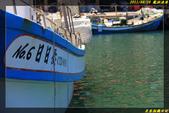 龍洞漁港:IMG_19.jpg