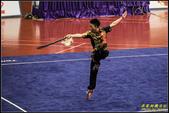 2016年第九屆亞洲武術錦標賽:IMG_08.jpg