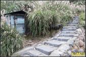 陽明山‧小油坑:IMG_10.jpg