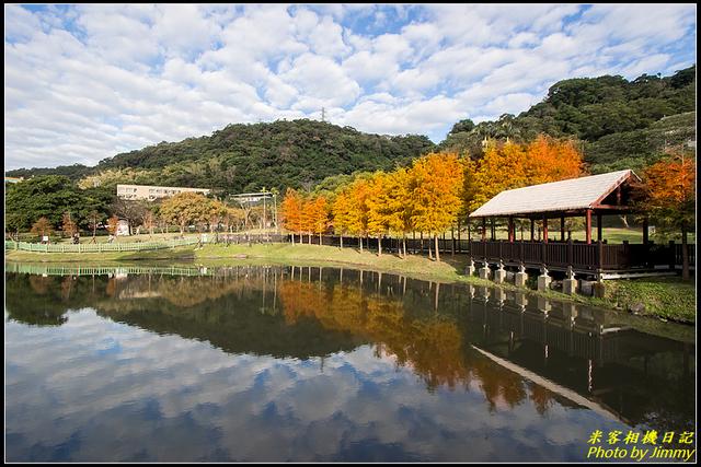 IMG_02.jpg - 原住民文化主題公園落羽松