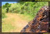 金瓜石地質公園:IMG_06.jpg