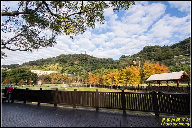 IMG_07.jpg - 原住民文化主題公園落羽松