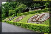 棲蘭國家森林遊樂區:IMG_13.jpg