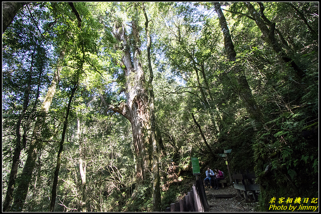 IMG_38.jpg - 拉拉山自然保護區