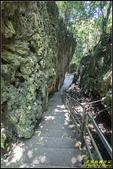 墾丁森林遊樂區‧地質與生態奇景:IMG_03.jpg