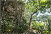 墾丁森林遊樂區‧地質與生態奇景:IMG_04.jpg