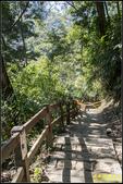 瑞里‧青年嶺步道、千年蝙蝠洞、燕子崖:IMG_20.jpg