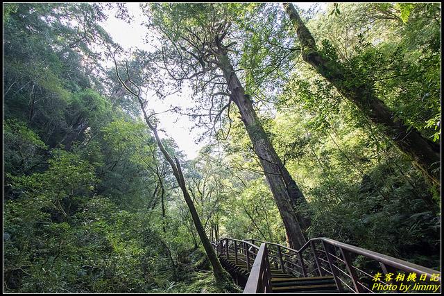 IMG_18.jpg - 拉拉山自然保護區