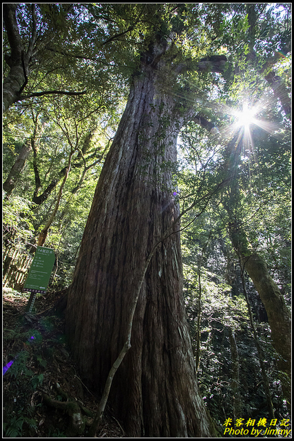 IMG_39.jpg - 拉拉山自然保護區