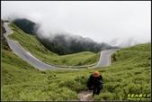 合歡山主峰步道:IMG_03.jpg