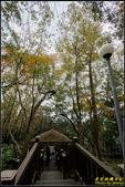 辭修公園楓紅:IMG_15.jpg