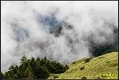 合歡山東峰步道:IMG_08.jpg
