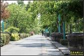 慶和橋津梅棧道:IMG_13.jpg