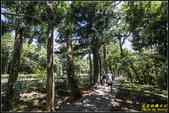 墾丁森林遊樂區‧地質與生態奇景:IMG_09.jpg