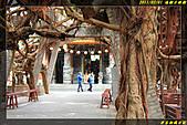 通樑古榕樹、通樑漁港:IMG_05.jpg