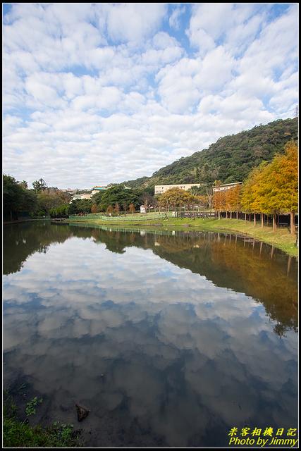 IMG_05.jpg - 原住民文化主題公園落羽松