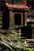 後龍土地公廟:IMG_12.jpg