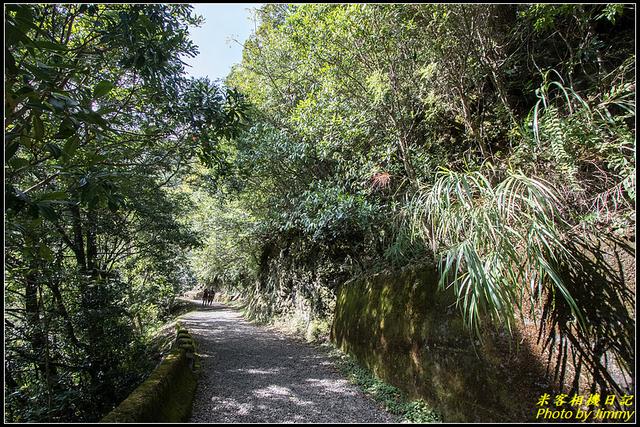 IMG_11.jpg - 拉拉山自然保護區