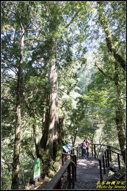 IMG_34.jpg - 拉拉山自然保護區