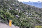 北合歡山步道:IMG_16.jpg