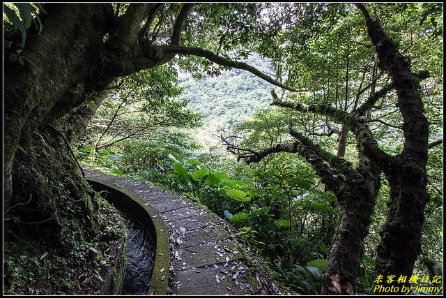 青山瀑布:IMG_06.jpg
