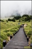 合歡山東峰步道:IMG_10.jpg