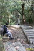 東眼山自導式步道:IMG_18.jpg