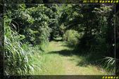 金瓜石地質公園:IMG_17.jpg