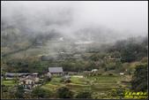 竹子湖‧黑森林:IMG_17.jpg
