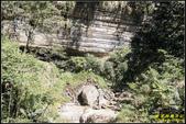 瑞里‧青年嶺步道、千年蝙蝠洞、燕子崖:IMG_08.jpg