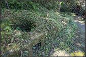 圓潭自然生態園區:IMG_11.jpg