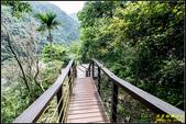 小錐麓步道:IMG_13.jpg