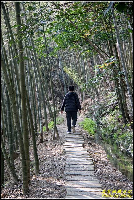 IMG_07.jpg - 長源圳生態步道、孟宗竹林古戰場