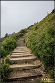 合歡山東峰步道:IMG_04.jpg