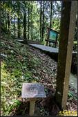 東眼山自導式步道:IMG_05.jpg