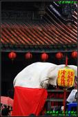 三峽祖師廟‧初六賽豬公:IMG_13.JPG