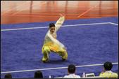 2016年第九屆亞洲武術錦標賽:IMG_20.jpg